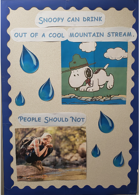 &#34Snoopy can drink out of a cool mountain stream.&#34 Showing Snoopy drinking water. &#34People sh